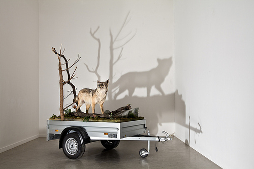 Mark Dion, Mobile Wilderness Unit - Wolf (2006).