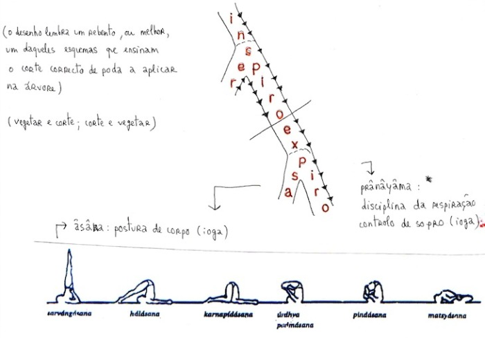 figura21a